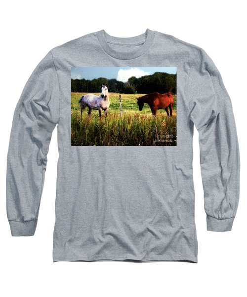 Waiting For Apples Long Sleeve T-Shirt by RC deWinter