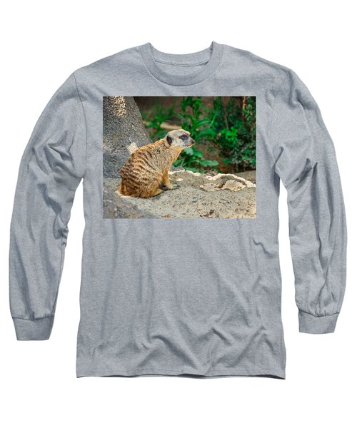 Watchful Meerkat Long Sleeve T-Shirt