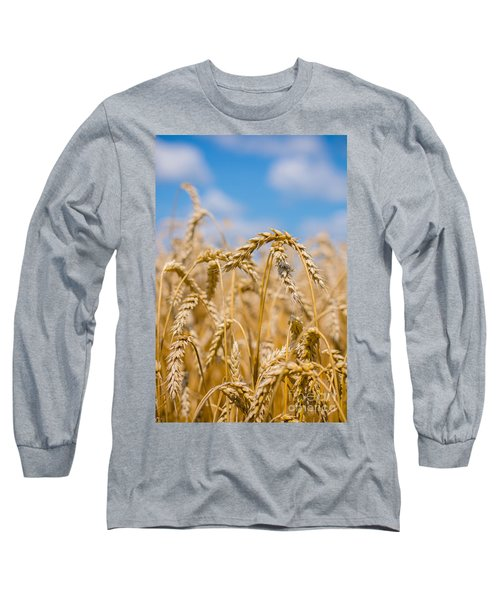 Wheat Long Sleeve T-Shirt by Cheryl Baxter