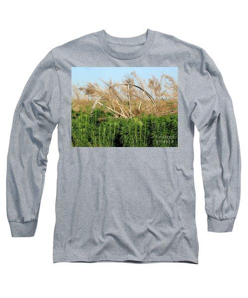 Wheel Forgotten Long Sleeve T-Shirt