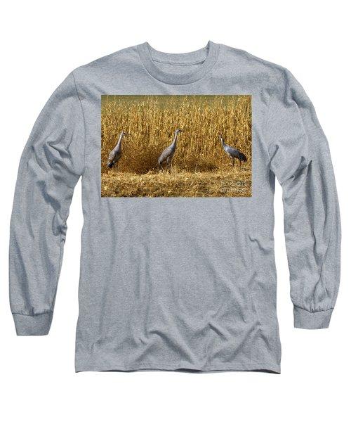 Where Is The Corn Long Sleeve T-Shirt