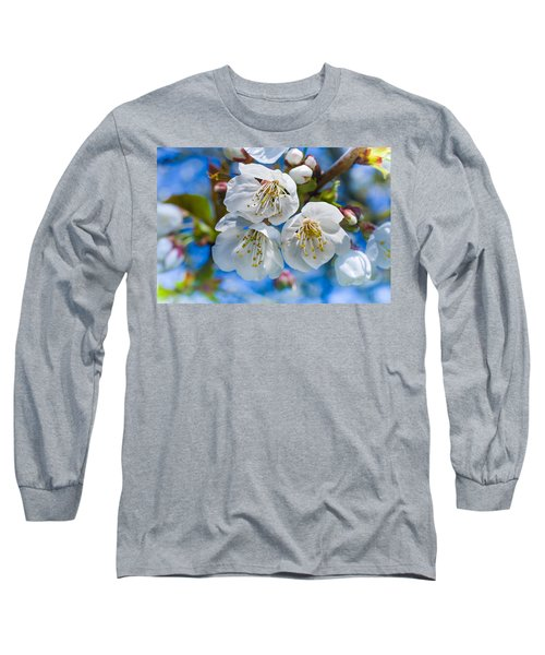 White Cherry Blossoms Blooming In The Springtime Long Sleeve T-Shirt