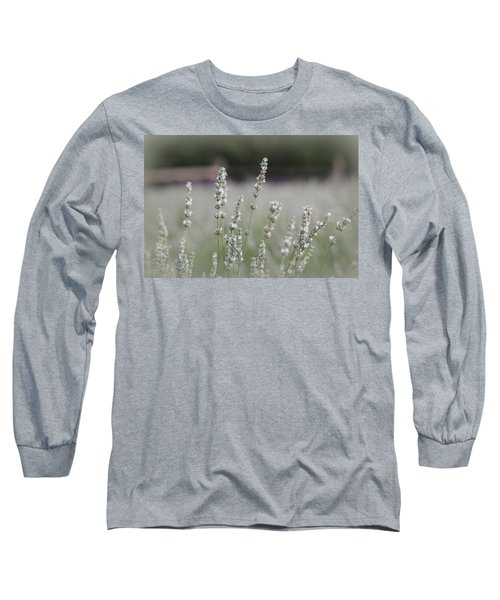 Long Sleeve T-Shirt featuring the photograph White Lavender by Lynn Sprowl