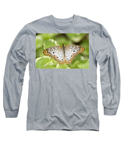 White Peacock Long Sleeve T-Shirt by Bryan Keil