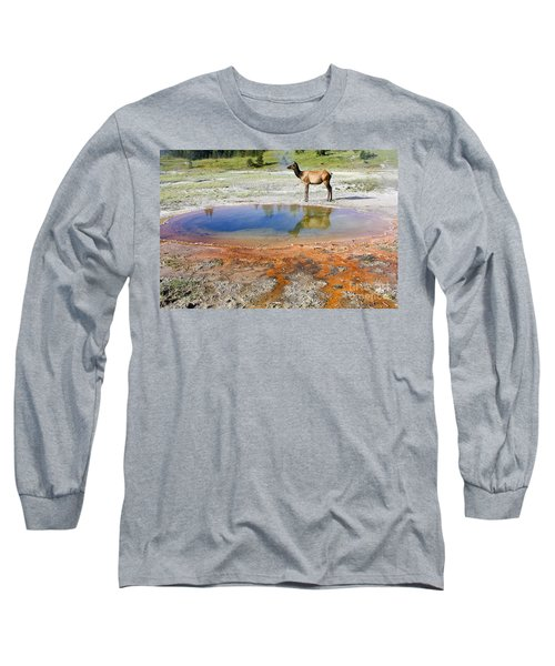 Long Sleeve T-Shirt featuring the photograph Wild And Free In Yellowstone by Teresa Zieba