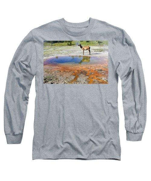 Wild And Free In Yellowstone Long Sleeve T-Shirt by Teresa Zieba