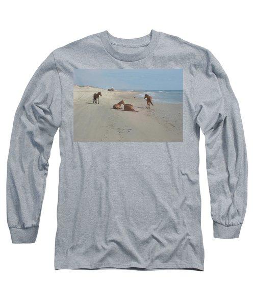 Wild Horses On The Beach Long Sleeve T-Shirt