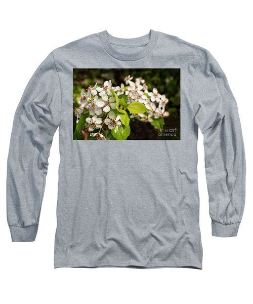 Wild Plum Blossoms Long Sleeve T-Shirt by Ella Kaye Dickey