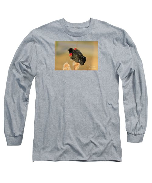 Long Sleeve T-Shirt featuring the photograph Wings In A Golden Light 2 by Chris Anderson