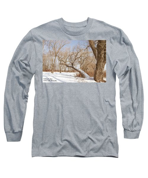 Winter Solitude Long Sleeve T-Shirt