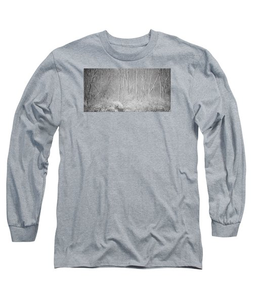 Long Sleeve T-Shirt featuring the photograph Winter Wood 2013 by Joan Davis
