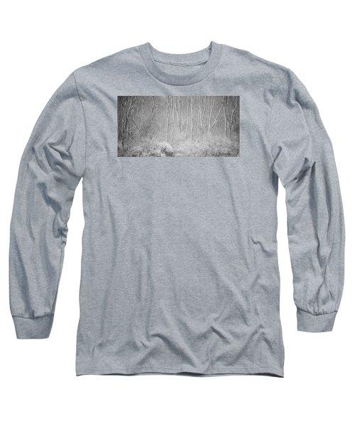 Winter Wood 2013 Long Sleeve T-Shirt by Joan Davis
