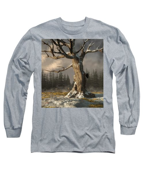 Winterscape Long Sleeve T-Shirt