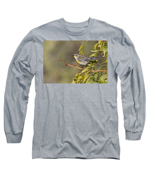 Yellow Rumped Warbler Long Sleeve T-Shirt by Bryan Keil