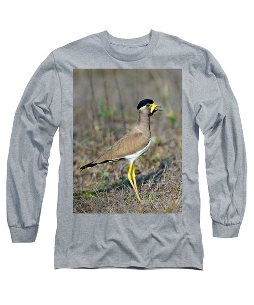 Yellow-wattled Lapwing Vanellus Long Sleeve T-Shirt by Panoramic Images