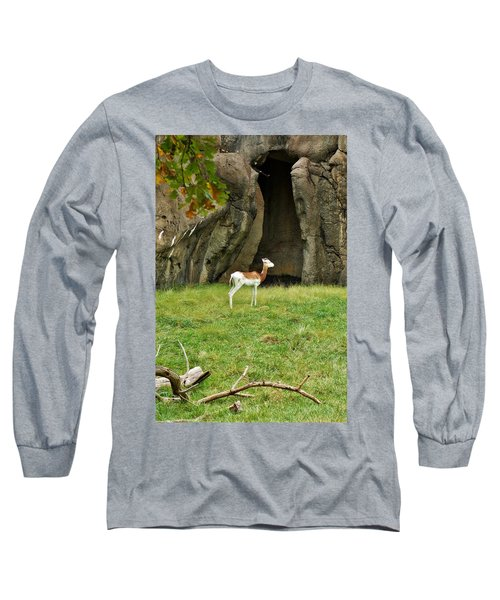 Long Sleeve T-Shirt featuring the photograph Young Addra Gazelle by Jean Goodwin Brooks