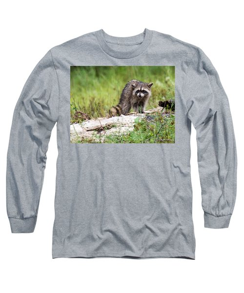 Young Raccoon Long Sleeve T-Shirt