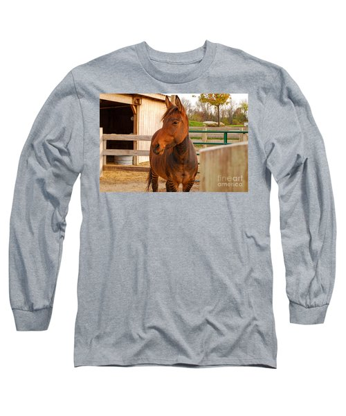 Zorse Long Sleeve T-Shirt