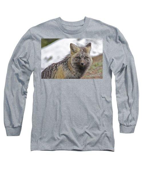 Long Sleeve T-Shirt featuring the photograph Cascade Red Fox by Sean Griffin