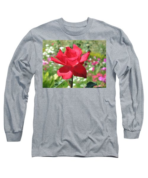 Long Sleeve T-Shirt featuring the photograph A Beautiful Red Flower Growing At Home by Ashish Agarwal