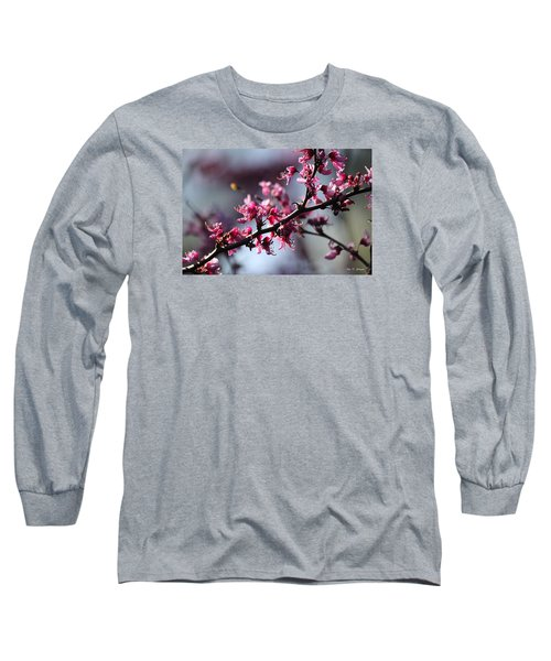 Long Sleeve T-Shirt featuring the photograph A Hint Of Spring  by Amy Gallagher