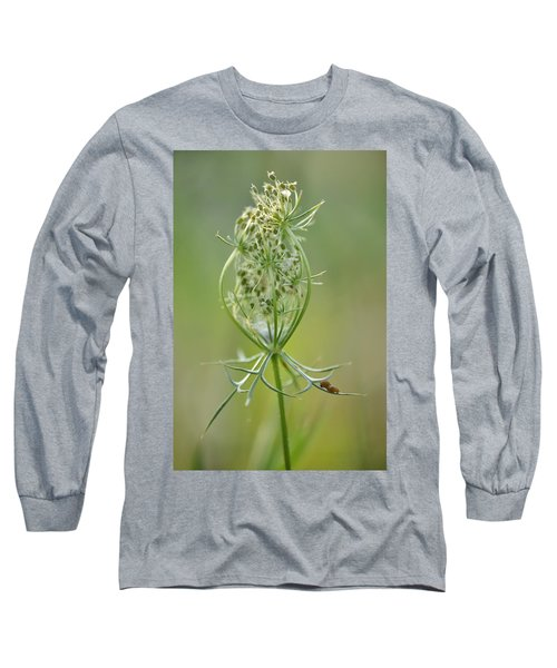 Long Sleeve T-Shirt featuring the photograph A Meal Of Lace by JD Grimes