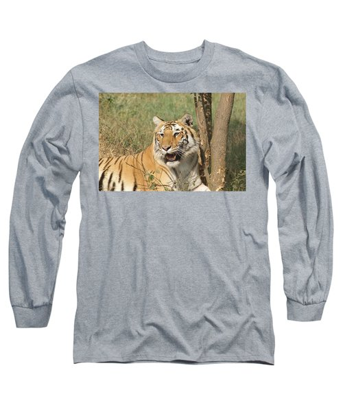 A Tiger Lying Casually But Fully Alert Long Sleeve T-Shirt