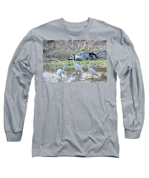 Long Sleeve T-Shirt featuring the photograph Alligator Looking For Food by Dan Friend