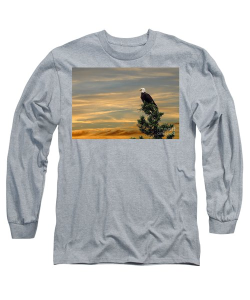 Long Sleeve T-Shirt featuring the photograph American Eagle Sunset by Dan Friend