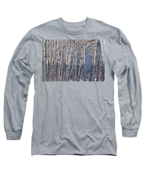 Long Sleeve T-Shirt featuring the photograph Aspen Grove by Colleen Coccia