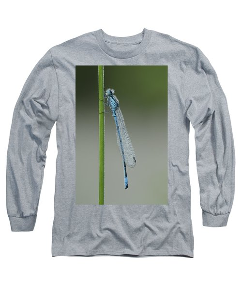 Azure Damselfly Long Sleeve T-Shirt