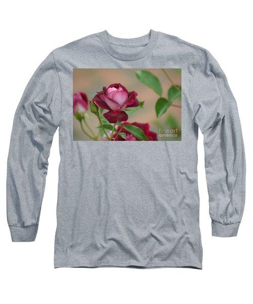 Burgundy Iceberg Long Sleeve T-Shirt by Living Color Photography Lorraine Lynch