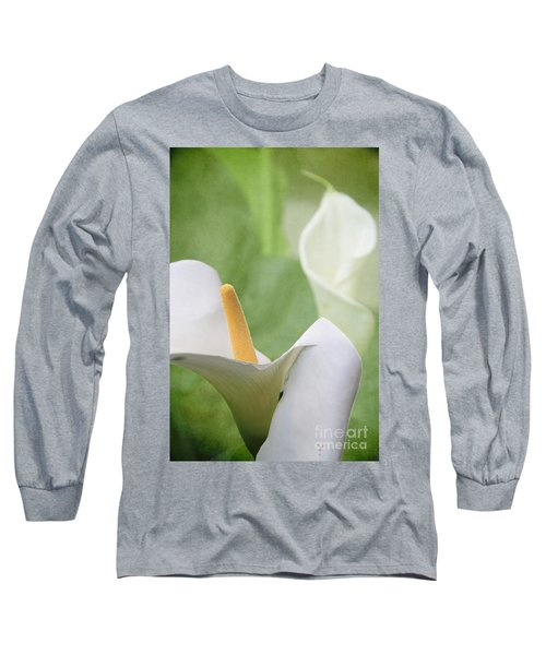 Calla Lilies Long Sleeve T-Shirt by Alyce Taylor