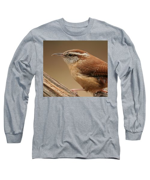 Carolina Wren Long Sleeve T-Shirt by Daniel Reed