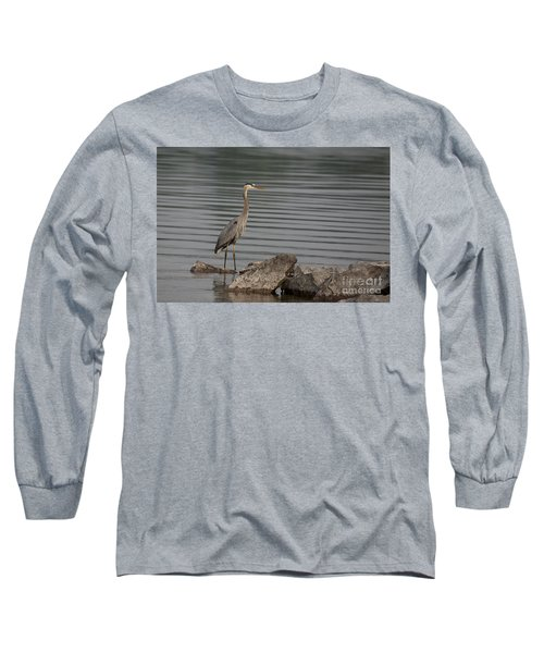 Cautious Long Sleeve T-Shirt by Eunice Gibb