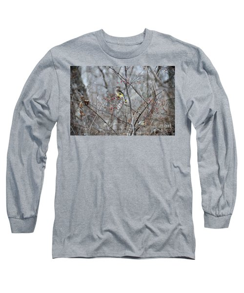 Cedar Wax Wing 3 Long Sleeve T-Shirt by David Arment