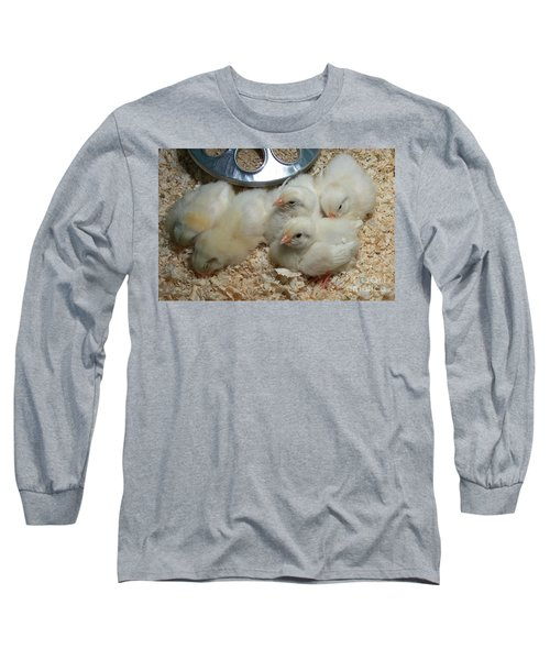 Long Sleeve T-Shirt featuring the photograph Cute And Fuzzy Chicks by Chalet Roome-Rigdon