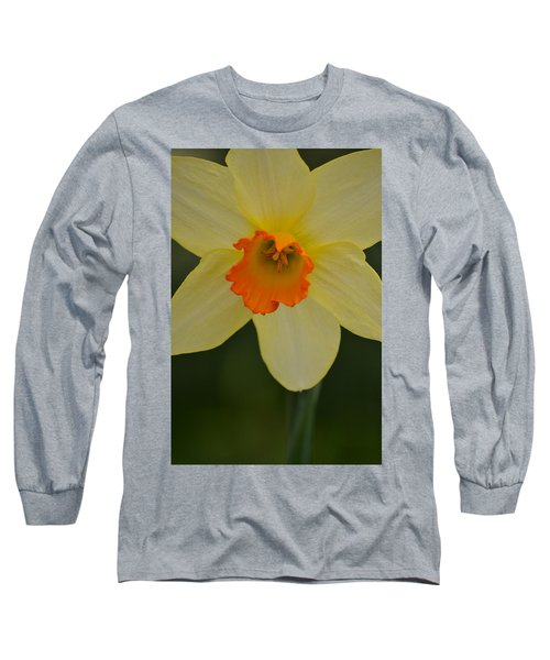 Daffodilicious Long Sleeve T-Shirt by JD Grimes