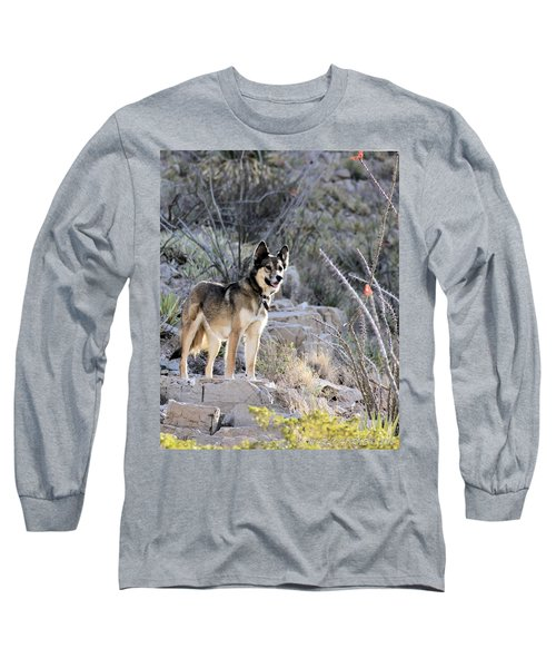 Dog In The Mountains Long Sleeve T-Shirt