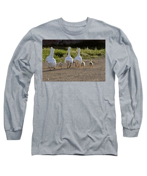 Domestic Geese With Goslings Long Sleeve T-Shirt