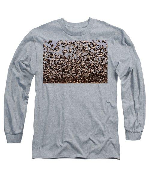 Duck Wall Long Sleeve T-Shirt
