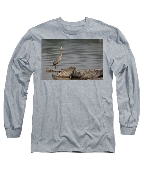 Ever Alert Long Sleeve T-Shirt by Eunice Gibb