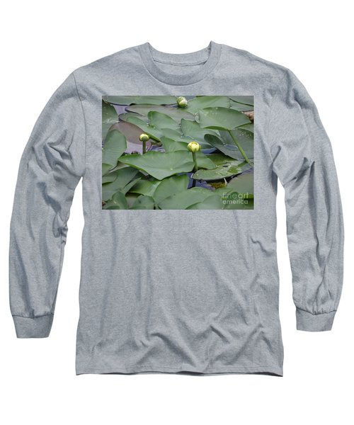 Everglade Beauty Long Sleeve T-Shirt