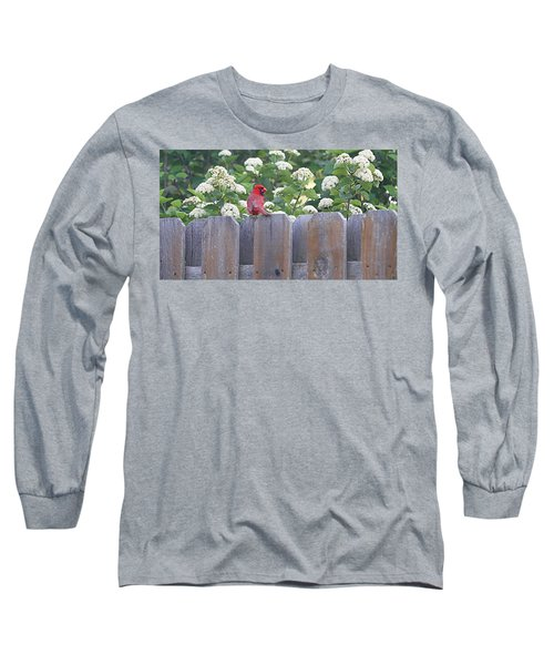 Long Sleeve T-Shirt featuring the photograph Fence Top by Elizabeth Winter