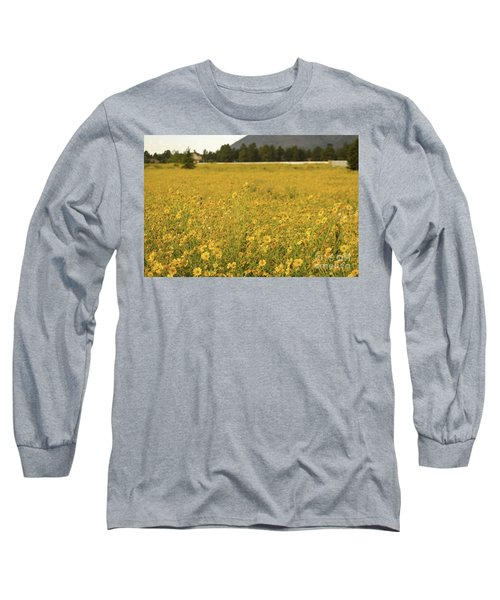 Field Of Yellow Daisy's Long Sleeve T-Shirt by Donna Greene