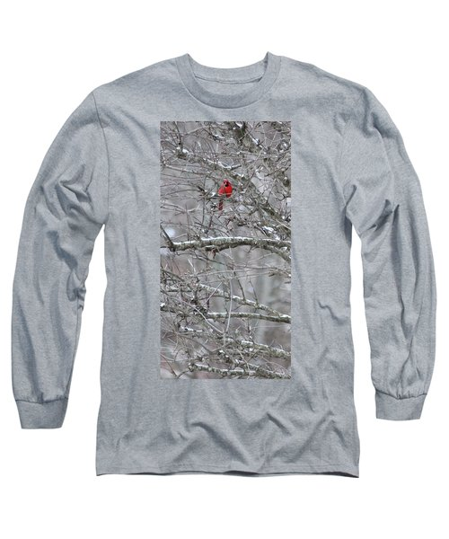 First Snow Fall Long Sleeve T-Shirt by Kume Bryant