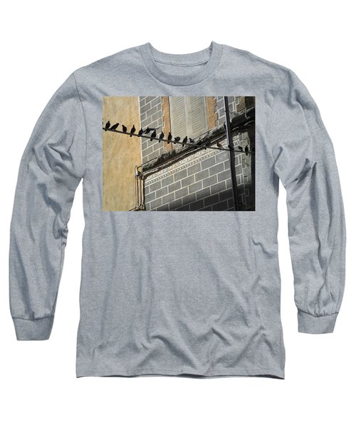 Florentine Pigeons Long Sleeve T-Shirt