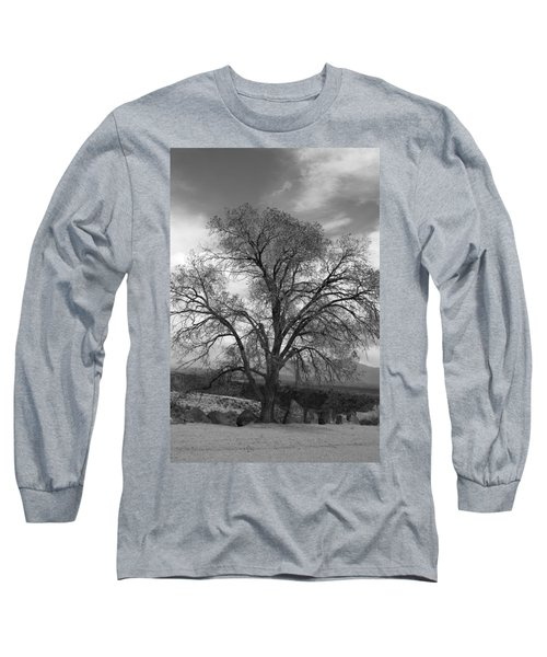 Grand Canyon Life Tree Long Sleeve T-Shirt