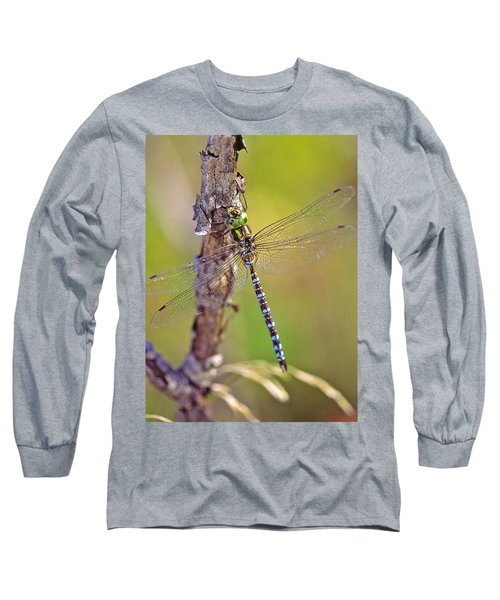 Green-striped Darner Dragonfly Long Sleeve T-Shirt