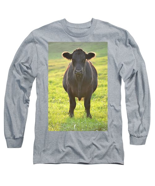 Here's The Beef Long Sleeve T-Shirt by JD Grimes